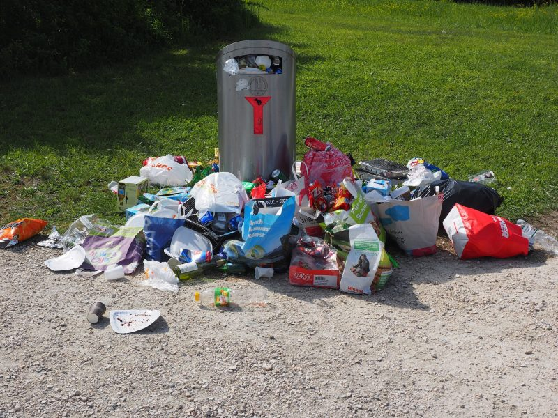 Overflowing bins- what's the danger?